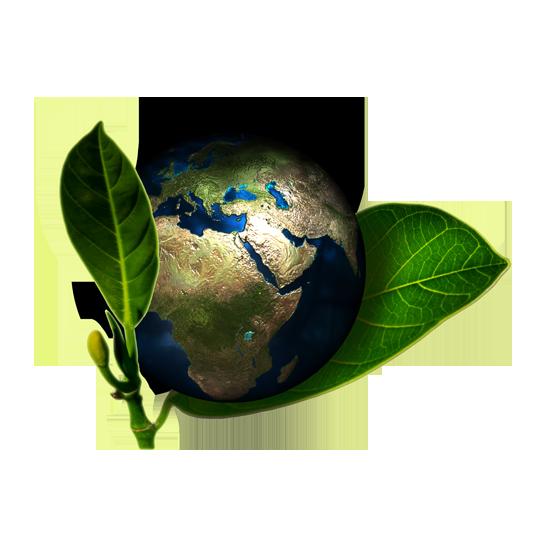 Illustration - Planet Erde umgeben von Blättern, wie eine Frucht