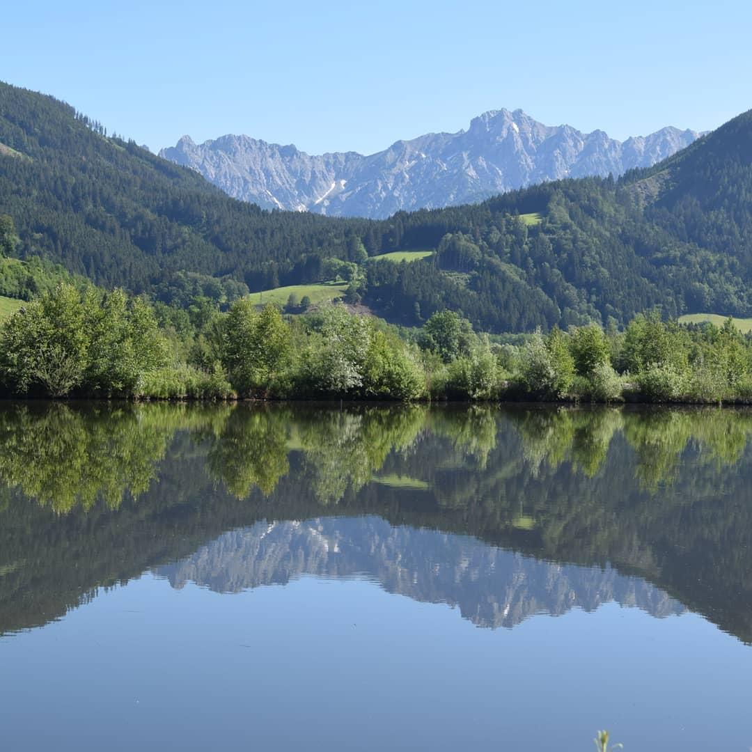 Spiegelung von Berg und Wald in Seeoberfläche