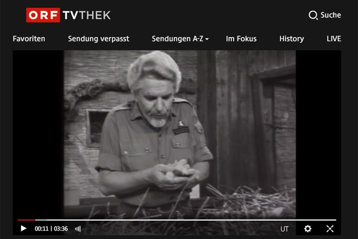 Screenshot aus der ORF TVThek, S/W, zeigt Otto König mit Küken