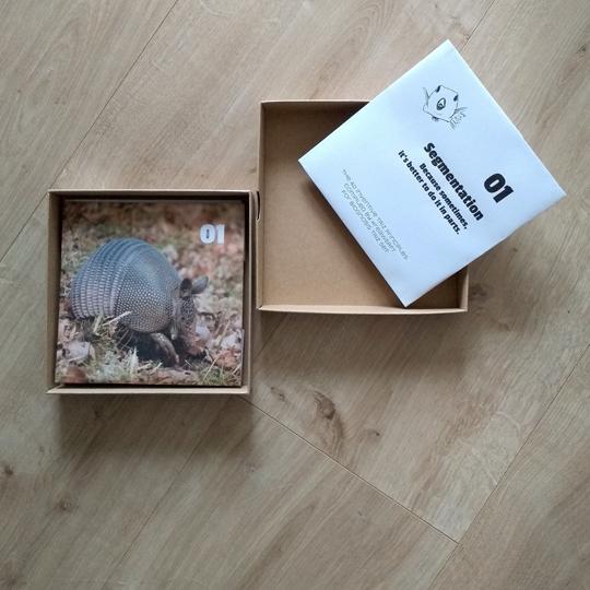 Quadratische Schachtel mit einem Kartenbeispiel (Gürteltier, Prinzip Segmentation)
