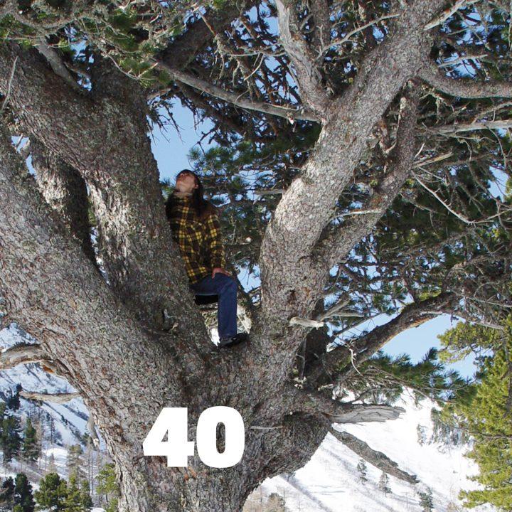 Ich vor ca. 15 Jahren, auf eine wunderschöne riesige Kiefer kletternd.