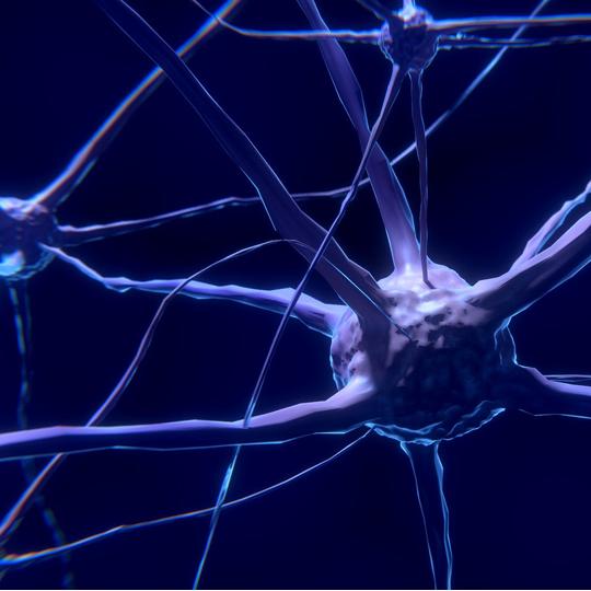 Neuronen Grafik