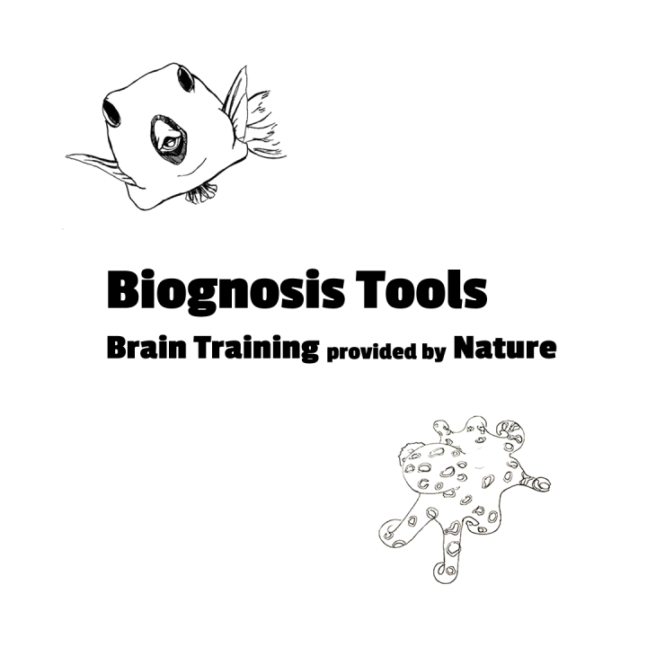 "Kofferfisch & Oktopus, gezeichnet, mit Slogan ""Biognosis Tools - Brain Training provided by Nature"""