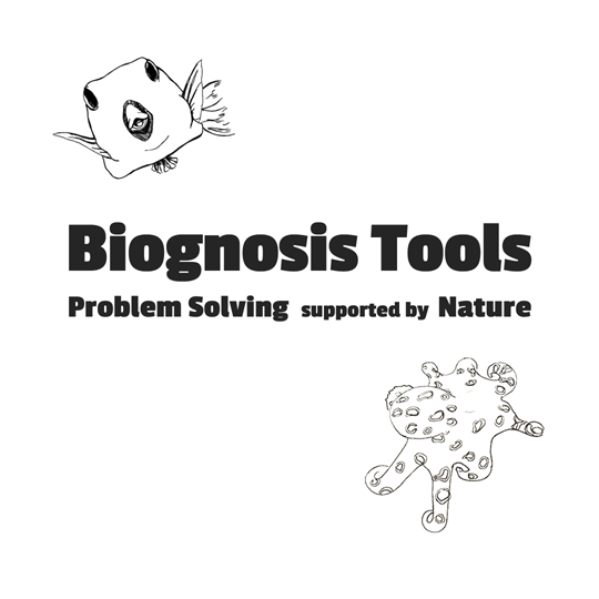 Biognosis Tools - Problem Solving supported by Nature